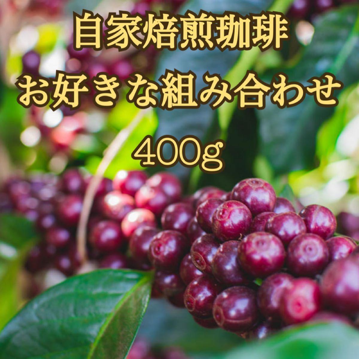 コーヒー豆 400g  お好きな組み合わせ 自家焙煎珈琲