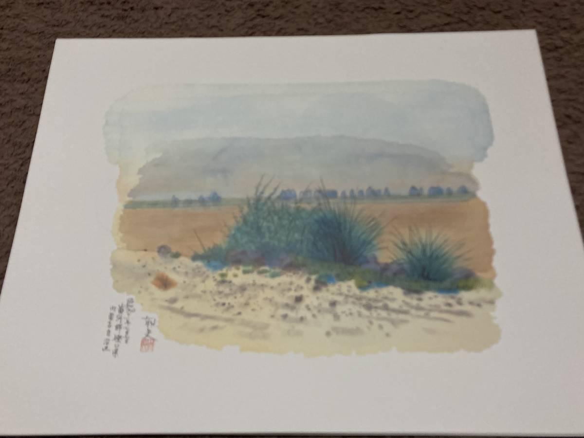 平山郁夫素描集 8枚セット 成川美術館所蔵 印刷_画像6
