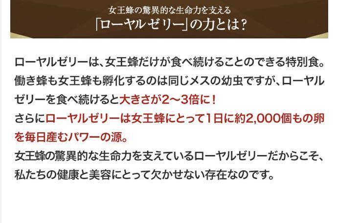 ローヤルゼリーキング 酵素分解 100粒入× 5袋 山田養蜂場 新品未開封_画像4