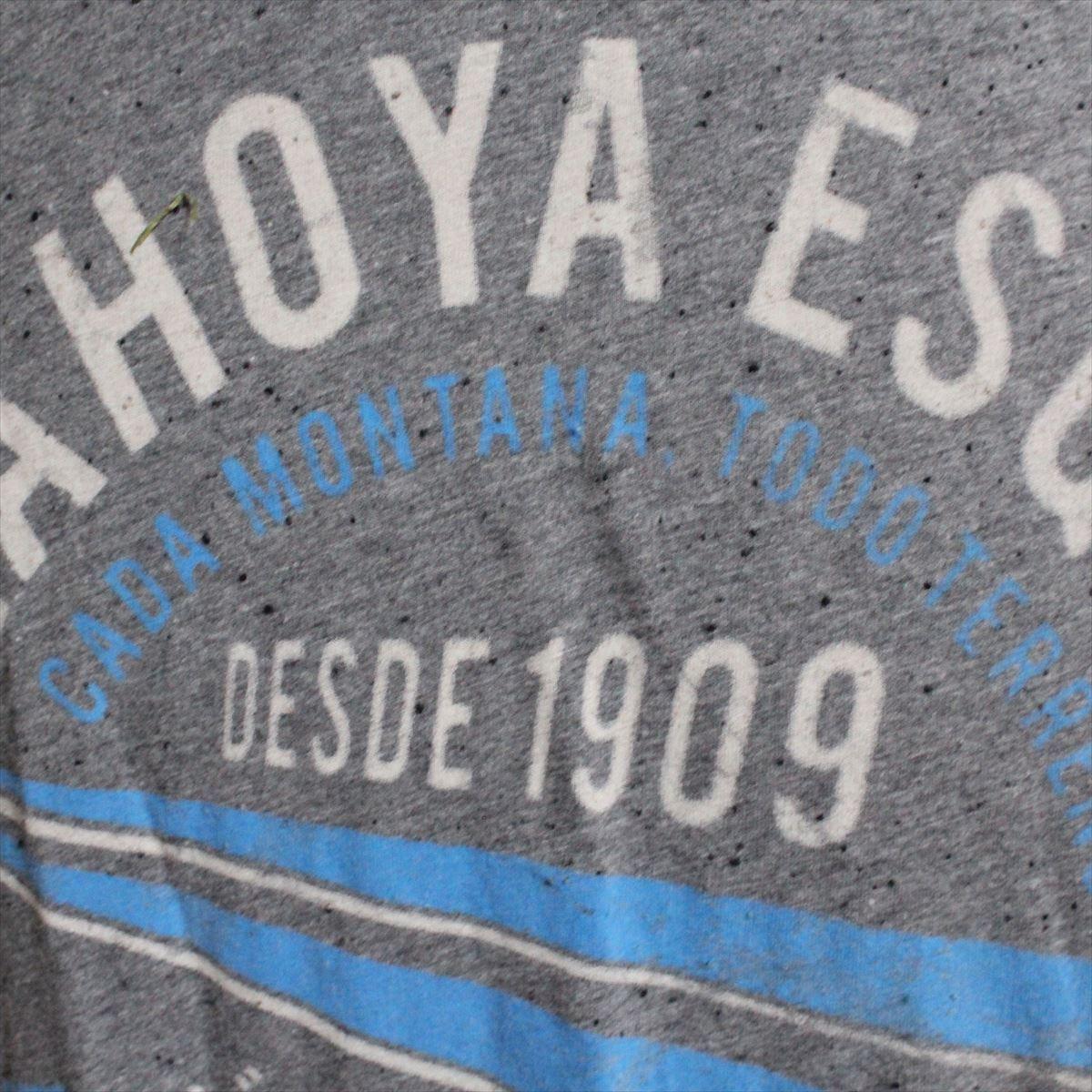 ゼインローブ ZANEROBE メンズ半袖Tシャツ グレー Sサイズ 新品 ESQUIL_画像2