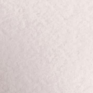 パルパー ホワイト A4 PCM竹尾 プリンタ用紙 彩現 メニュー・POP用 A4 パルパー ホワイト 1741998_画像6