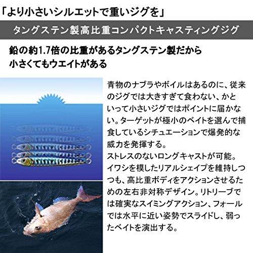FHカタクチ 30g ダイワ(Daiwa) メタルジグ ルアー TGベイト 30g FHカタクチ_画像2