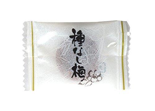 e-hiroya 種なし まろやか干し梅300g×1袋 業務用 チャック袋入_画像3