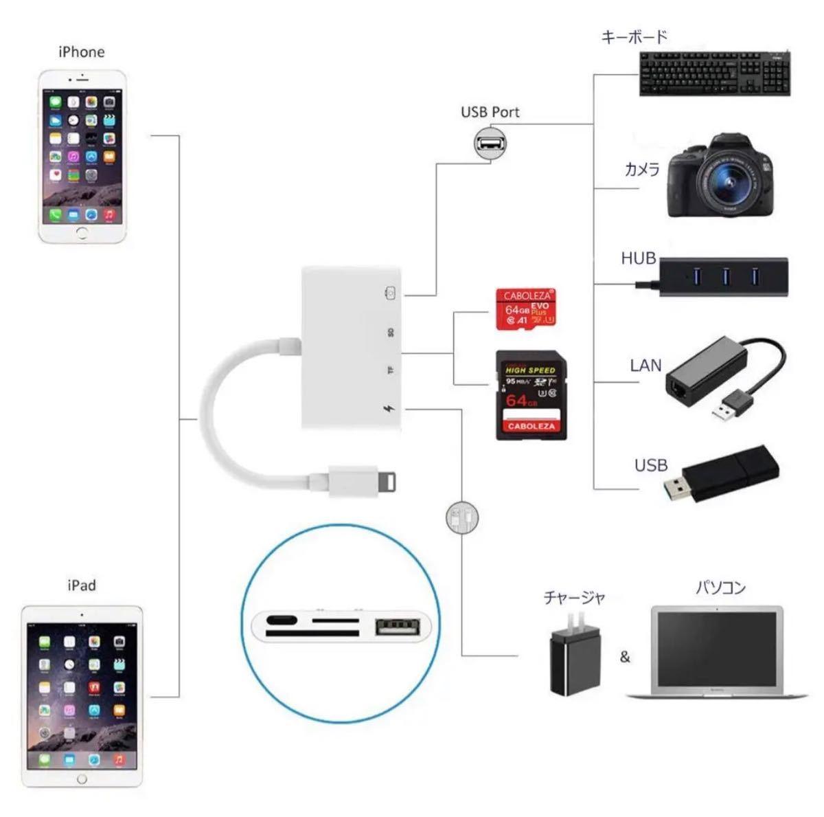SD カード カメラリーダー カメラデータ移行 人気