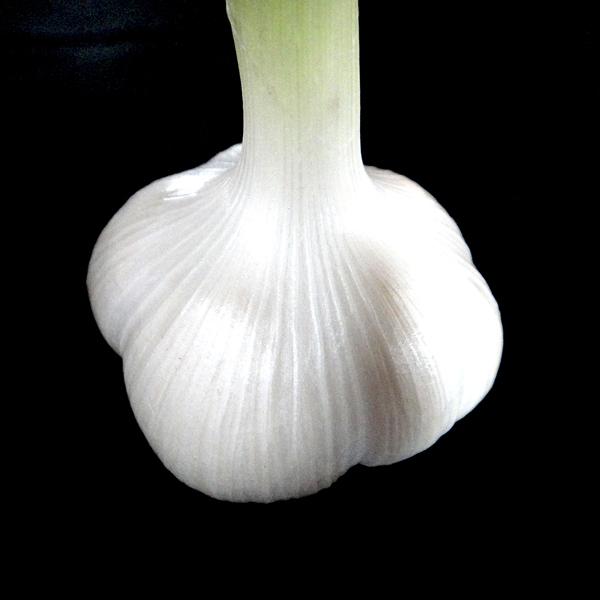 【ゆうパケット送料無料】安全で美味しい青森県産白にんにくバラ700g 日本のブランドにんにく「福地ホワイト六片」【8059】_地元青森のブランドにんにく