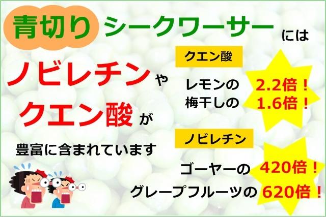 青切りシークヮーサー 500ml シークワサー生姜330g 2本セット 原液 ストレート 大宜味村 果汁100% ノビレチン ジンジャーエール