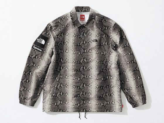 Supreme / The North Face Snakeskin Taped Seam Coaches Jacket Black L
