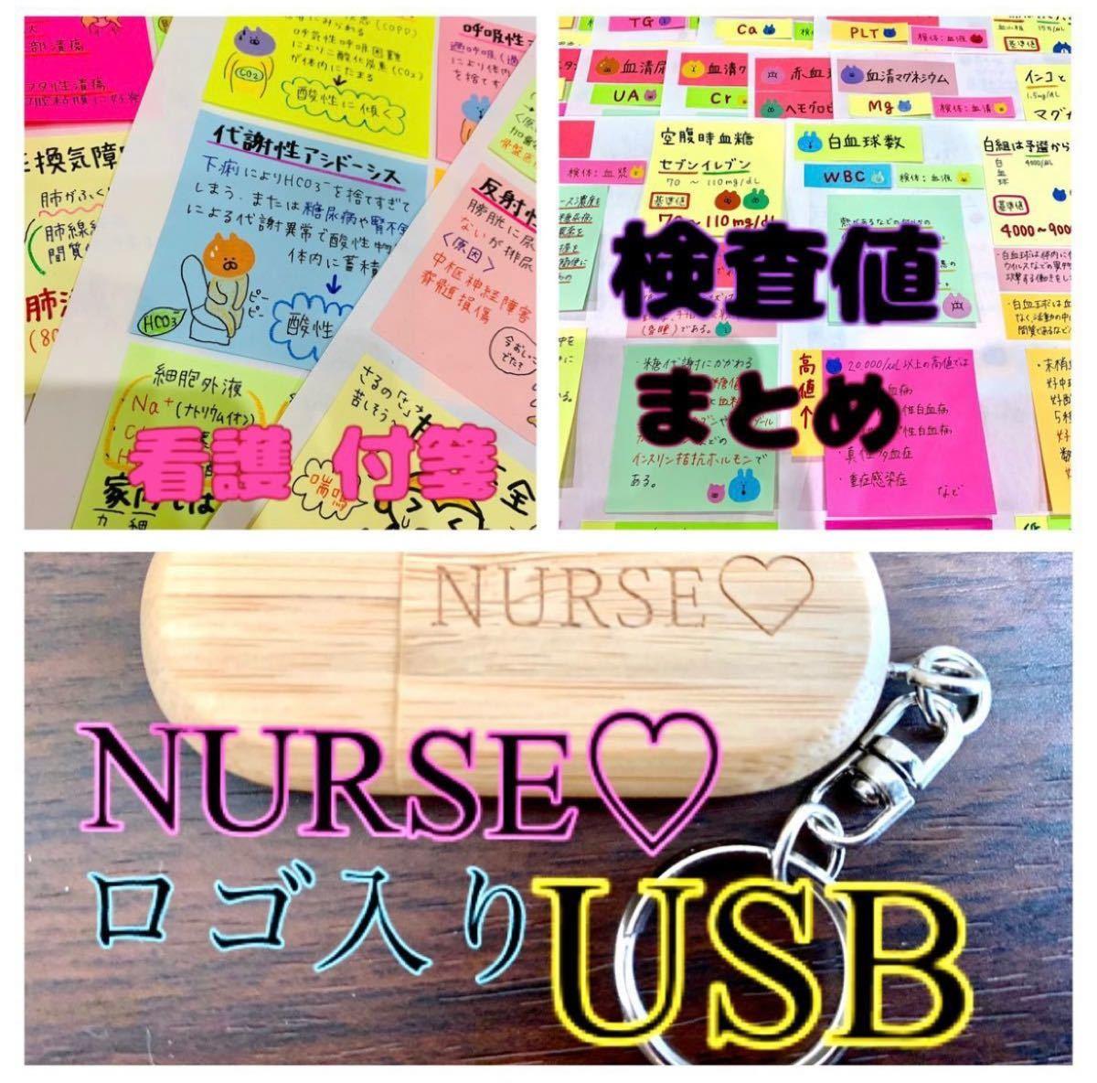 看護 付箋 ノート ★ 看護 実習 資料 USB ★ 検査値 まとめ セット (^^)