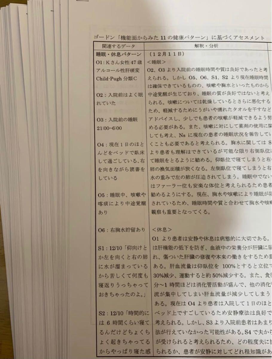 看護計画 ★ ゴードン 看護過程 セット ^_^