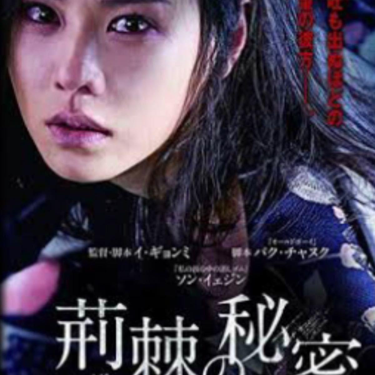 韓国映画  荊棘の秘密  ソン・イェジン  キム・ジュヒョク  DVD  日本語吹替有り  レーベル有り
