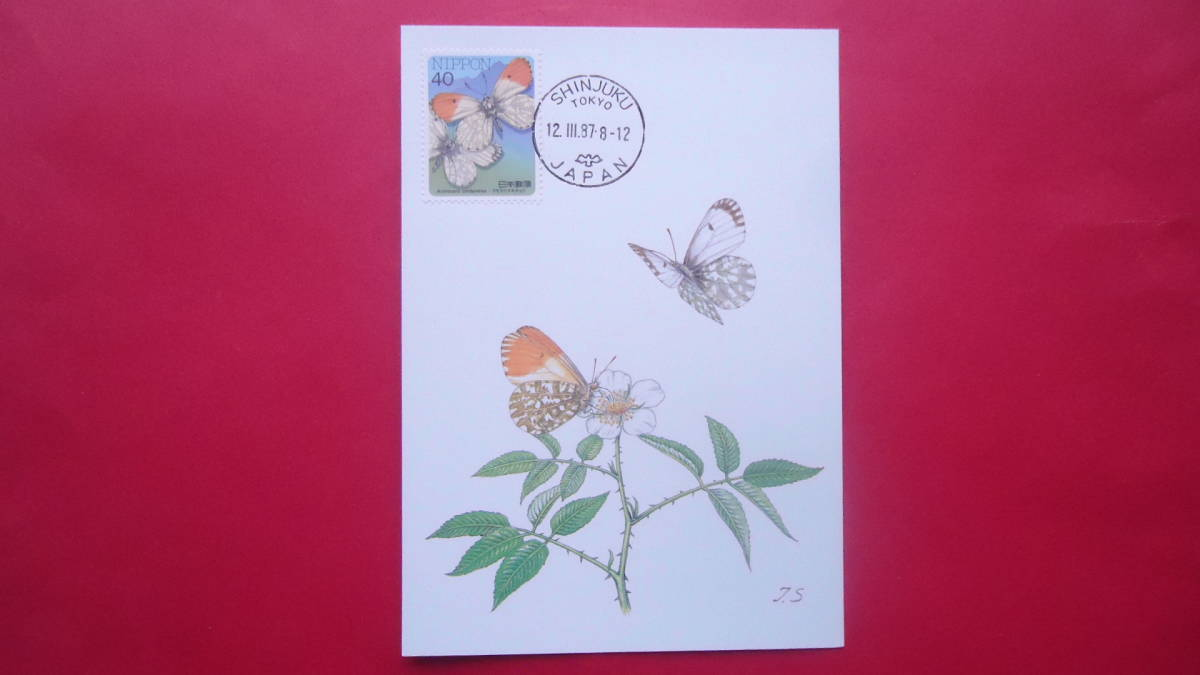 マキシマムカード1枚 昆虫シリーズ5集/クモマツマキチョウ 日本郵趣協会版