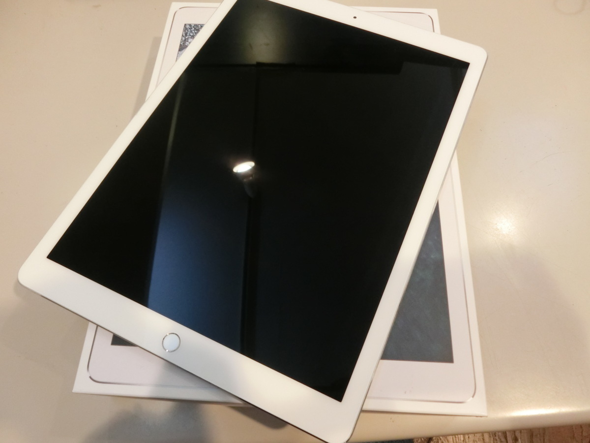 Apple☆iPad Pro12.9 Wi-Fi 256GB シルバー 中古品☆
