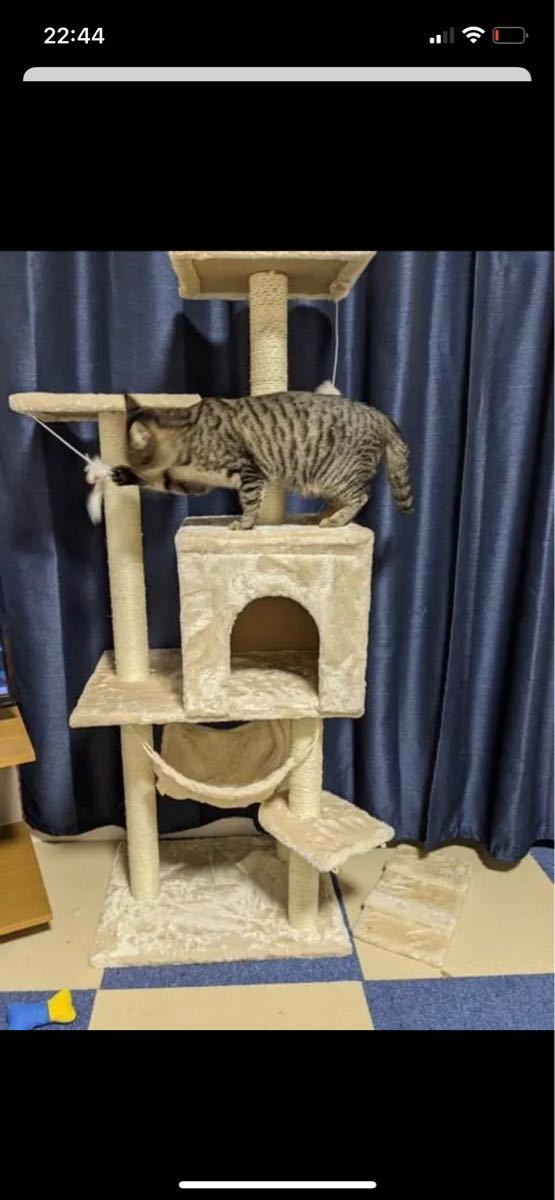 今日限定値下げ致しました 残り一点 欲しい方 早めにどうぞ キャットタワー  組み立て超簡単 猫タワー 爪とぎ 据え置き 高さ
