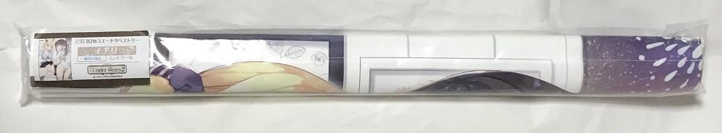 イチリ Underwears2 WスエードB2タペストリー メロンブックス うりぼうざっか店 23.4ド 制服 下着 ダブルスエード コミケ_画像2