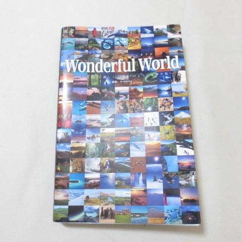 ワンダフルワールド 冒険家のように激しく、セレブのように優雅な旅へ A-WORKS_画像1