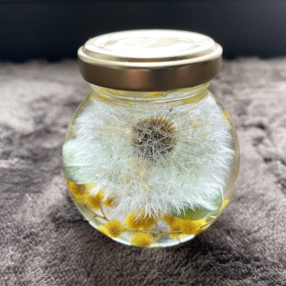 ハーバリウム たんぽぽ 綿毛 ミモザ イエロー 丸猫瓶 ギフト ドライフラワー 山野草_画像6