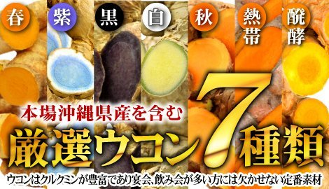 (約6ヵ月分/180粒)肝臓エキス+7種ウコン+シジミ(オルニチン)_画像5