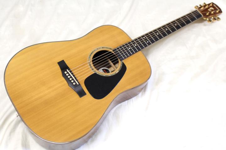 店頭展示品特価 Morris(モーリス) / M-51 NAT アコースティックギター おまけ付き!! ※全国送料無料(一部地域は除きます。)_画像1