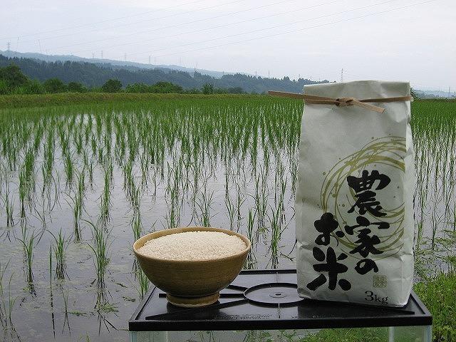 ( 令和2年収穫)<魚沼産コシヒカリ>・・(白米)10kg・・ 育苗~精米までワンチーム!!_画像1
