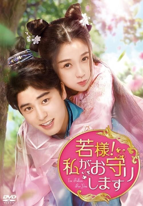 中国ドラマ「若様!私がお守りします」 DVD 全話