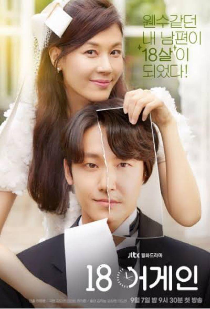 韓国ドラマ 18アゲイン DVD『レーベル印刷有り』全話