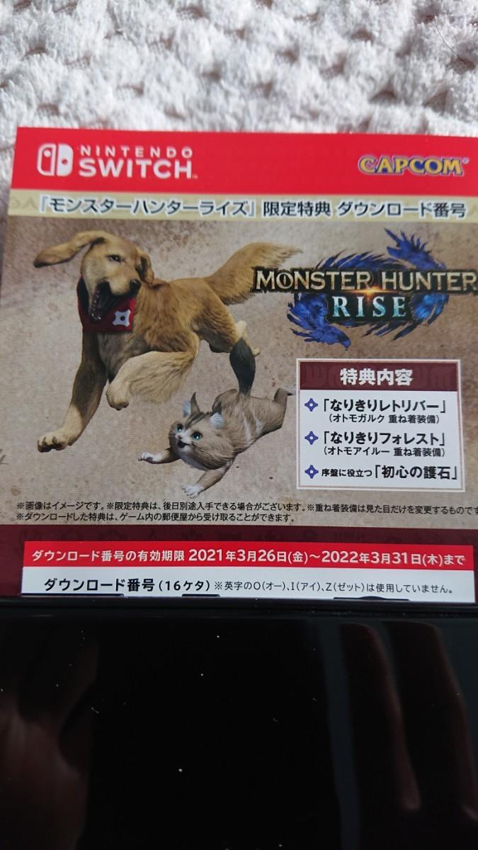 任天堂スイッチ Nintendo Switch モンスターハンターライズ 限定特典 ダウンロード