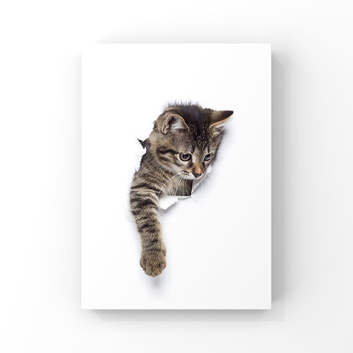 【専用出品】A4 ポスターのみ アートポスター インテリアポスター