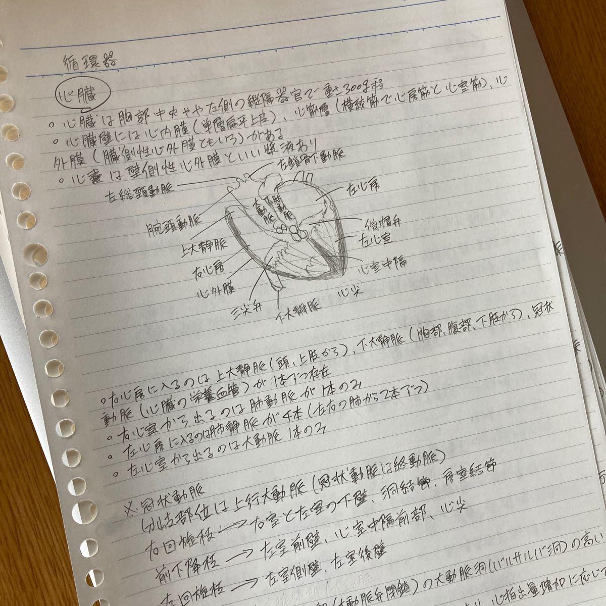 実習前まとめノート(看護学生)