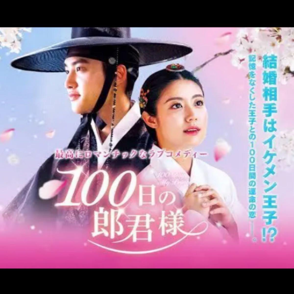 ★韓国ドラマ★『100日の郎君様』 日本語吹替付き DVD  15話全話!!
