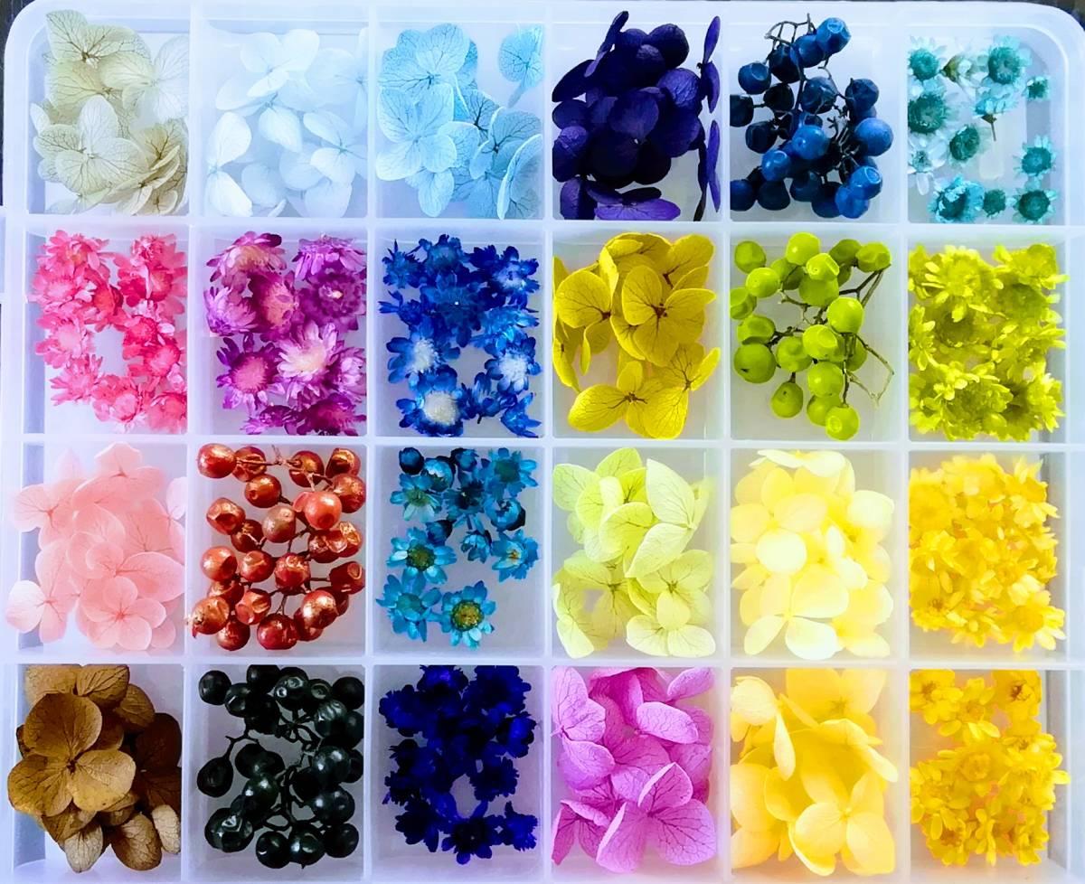 ●小さめ花材セットK ケース入り テラリウム インアリウム ハーバリウム印鑑 レジン封入 4●_画像2