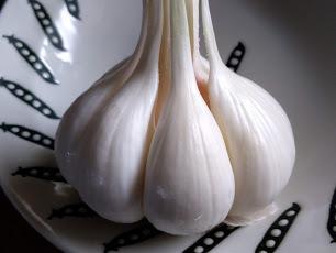 収穫仕立て!超新鮮な山口県産ニンニク 1個(1玉)生の大蒜です。_画像6