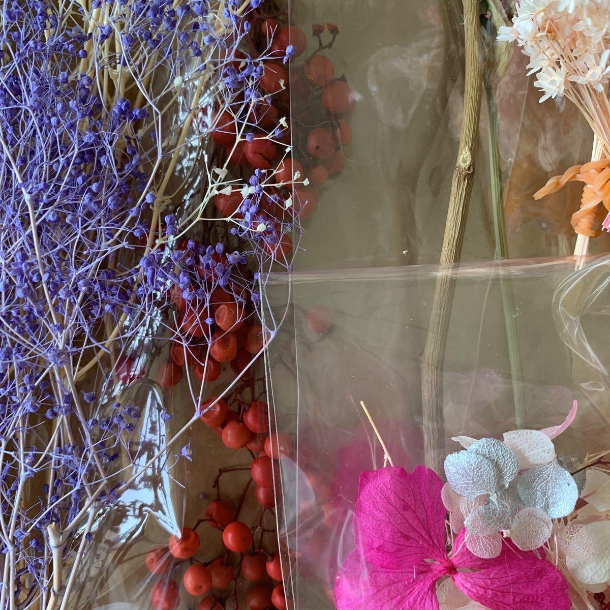 ハーバリウム花材 プリザーブドフラワー ドライフラワー ピンク系_画像6