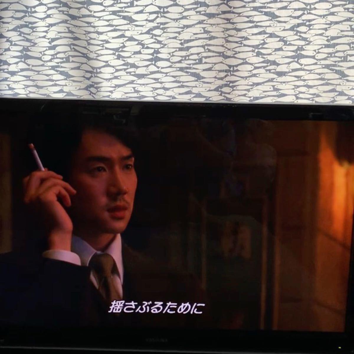 韓国映画愛を歌う花