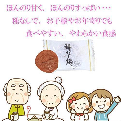 新品 e-hiroya 種なし まろやか干し梅300g×1袋 業務用 チャック袋入S3LF_画像3