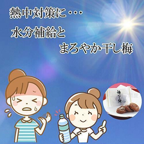新品 e-hiroya 種なし まろやか干し梅300g×1袋 業務用 チャック袋入S3LF_画像4