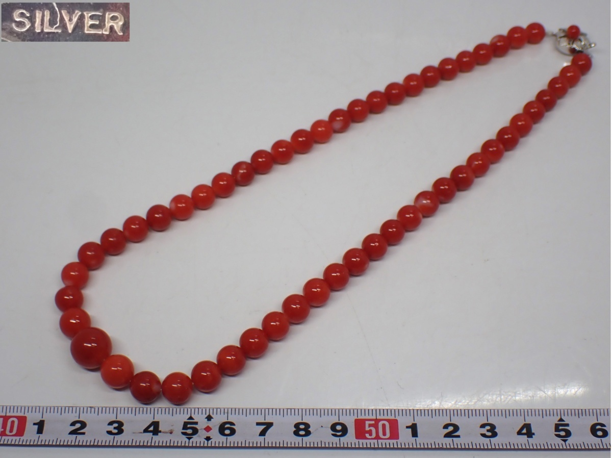 本血赤珊瑚 ネックレス 重さ:37g A233Y 60サイズ