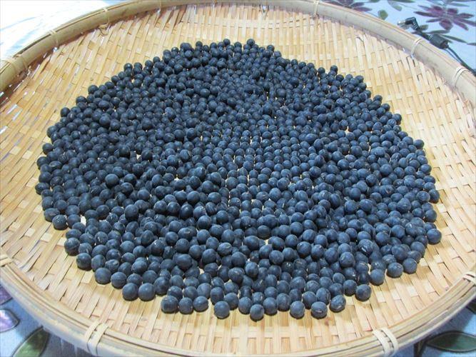 【送料無料】無農薬、有機肥料栽培 2020年兵庫県産丹波黒豆 L~3L丹波黒豆800g_画像1