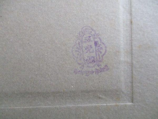 明治の古ナマ写真 門松と国旗が飾られている冨士貯蓄銀行の正月風景 C102_画像3