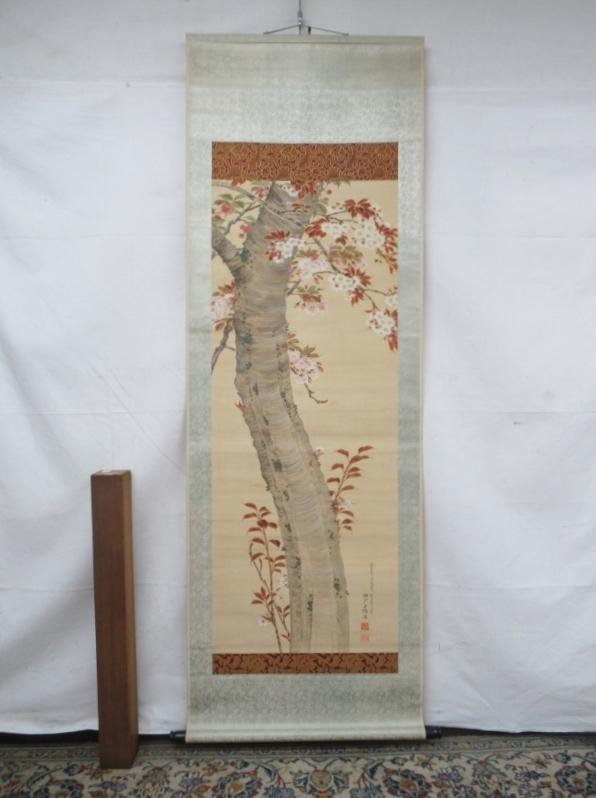 E3303 宮崎玉緒 深山桜 肉筆絹本 掛軸 軸箱