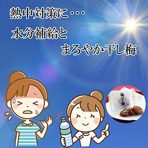 e-hiroya 種なし まろやか干し梅300g×1袋 業務用 チャック袋入_画像5