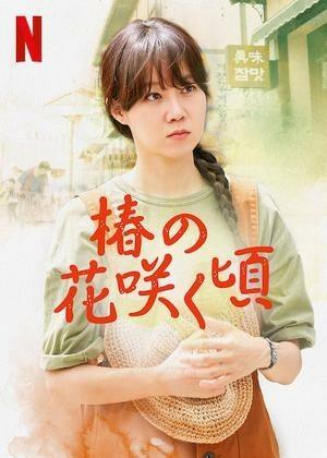 椿の花が咲く頃☆韓国ドラマ全話収録☆ブルーレイBlu-ray