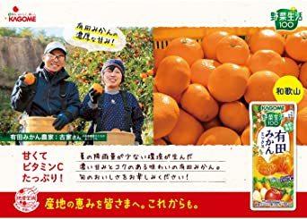 195ml×24本 カゴメ 野菜生活100 有田みかんミックス195ml ×24本_画像3