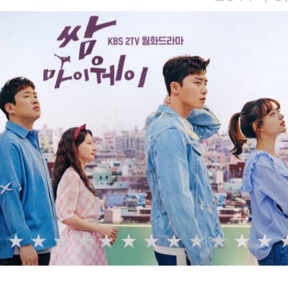 韓国ドラマ サムマイウェイ 特典ディスク  DVD