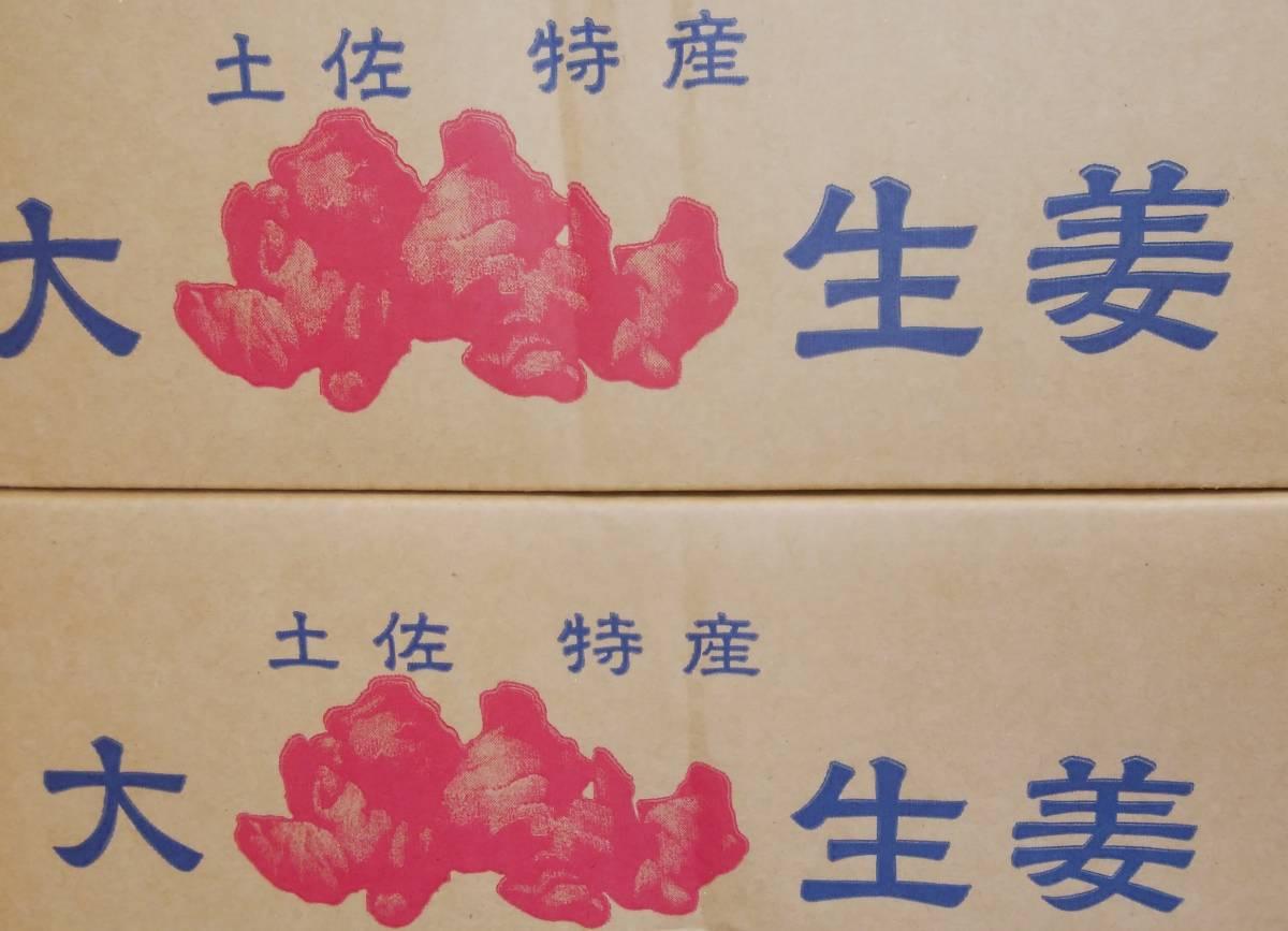 【高知県産】 親生姜 大サービス品! 約4kg ☆_画像4