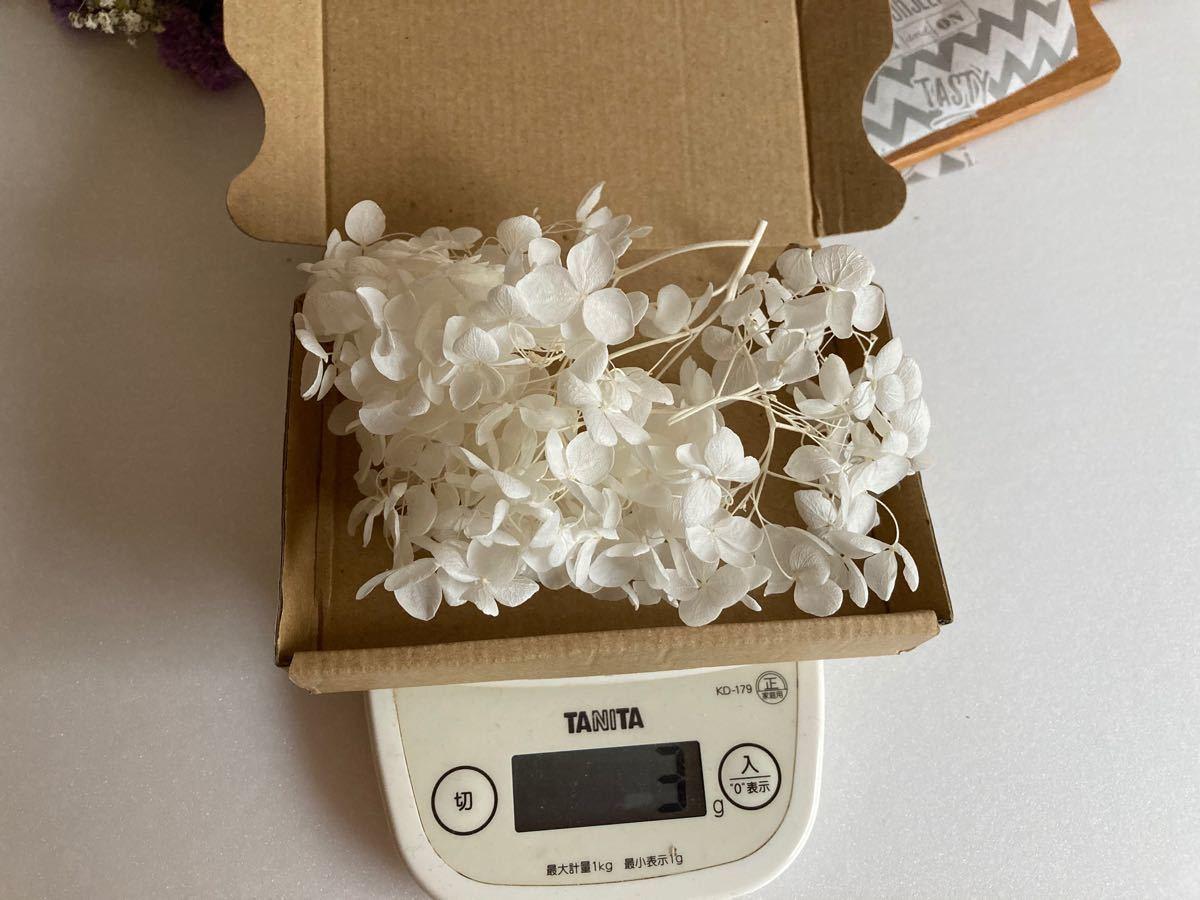 紫陽花 白  プリザーブドフラワー花材 ハーバリウム ハーバリウム花材 約3g