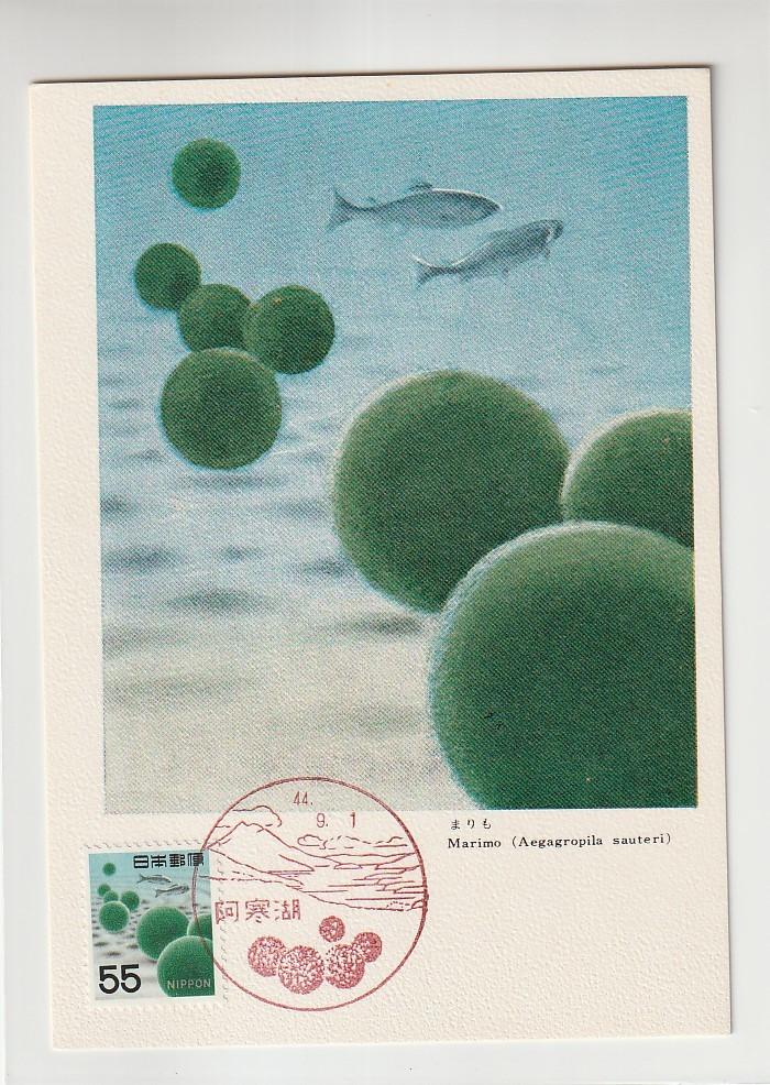 ◆動植物国宝マキシマムカード◆55円新マリモ