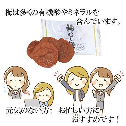 新品 e-hiroya 種なし まろやか干し梅300g×1袋 業務用 チャック袋入S3LF_画像5
