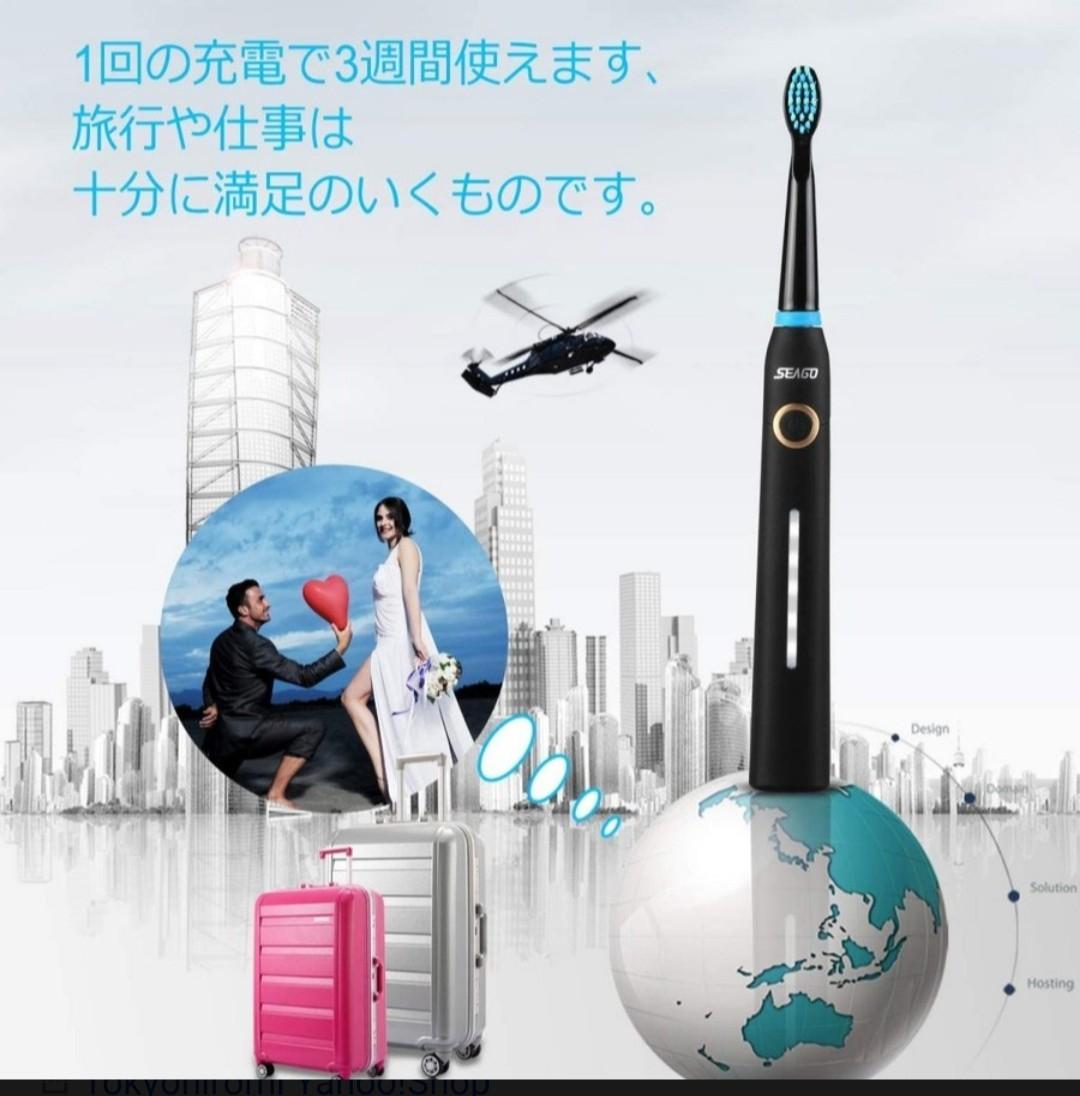電動歯ブラシ 音波 歯ブラシ 歯磨き 充電式  ハミガキ 本体 大人 替えブラシ 2本付き セット USB充電
