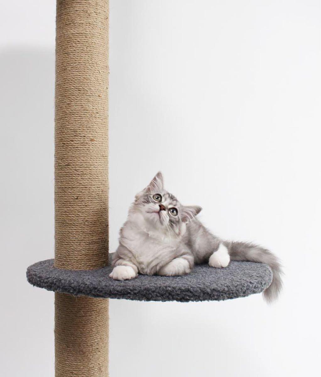 キャットタワー 突っ張り木登り 爪とぎ 高さ232-251cm 在宅応援赤字価額 キャットタワー 麻紐 猫タワー 天井