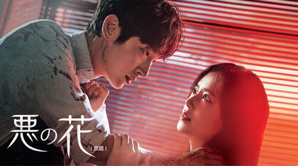 韓国ドラマ全話 DVD 悪の花